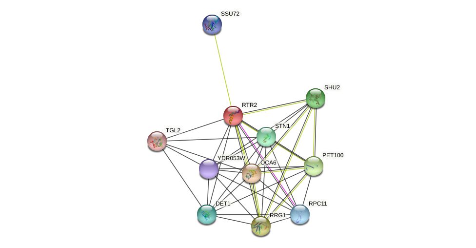 RTR2 protein (Saccharomyces cerevisiae) - STRING interaction network