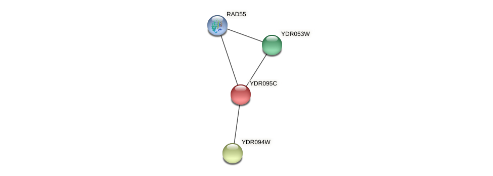 YDR095C protein (Saccharomyces cerevisiae) - STRING interaction network