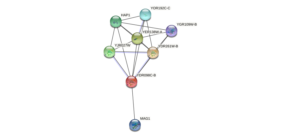 YDR098C-B protein (Saccharomyces cerevisiae) - STRING interaction network