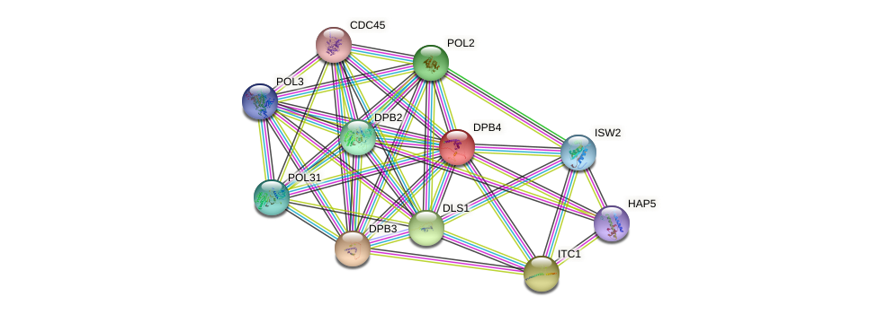 DPB4 protein (Saccharomyces cerevisiae) - STRING interaction network
