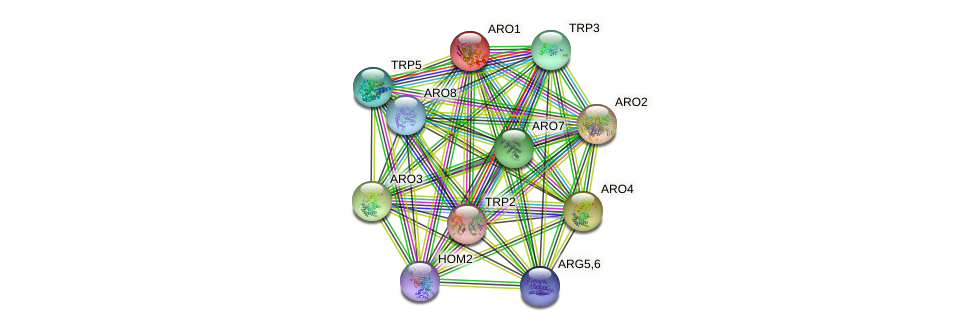 ARO1 protein (Saccharomyces cerevisiae) - STRING interaction network
