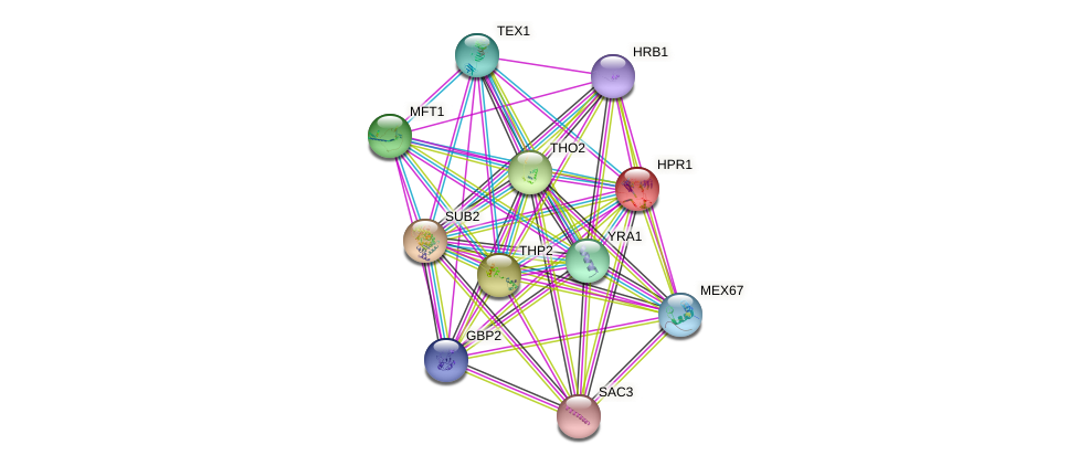HPR1 protein (Saccharomyces cerevisiae) - STRING interaction network
