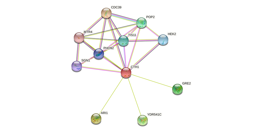 CTH1 protein (Saccharomyces cerevisiae) - STRING interaction network