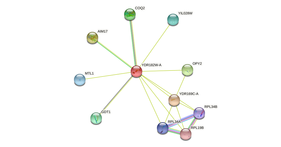 YDR182W-A protein (Saccharomyces cerevisiae) - STRING interaction network