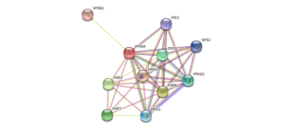 VPS64 protein (Saccharomyces cerevisiae) - STRING interaction network