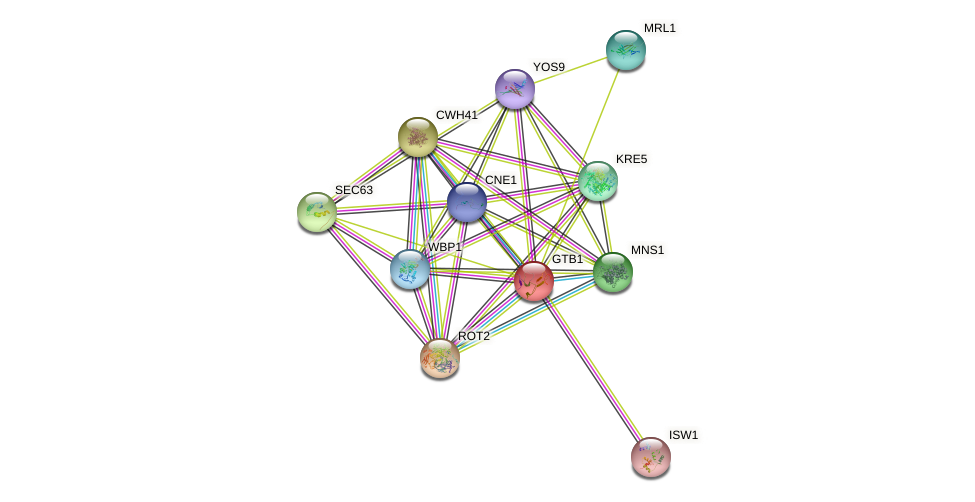 GTB1 protein (Saccharomyces cerevisiae) - STRING interaction network