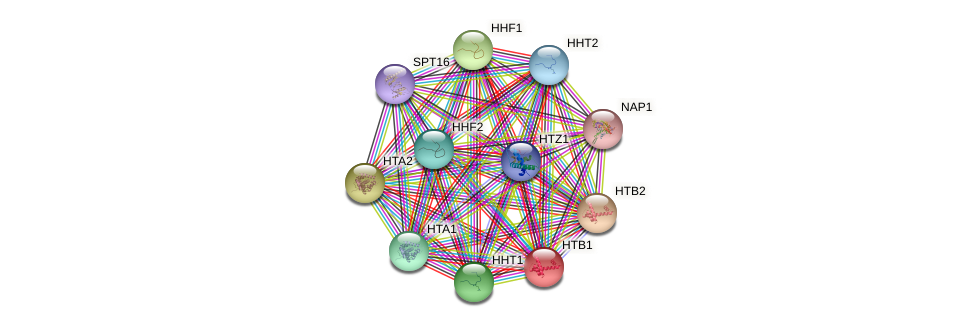 HTB1 protein (Saccharomyces cerevisiae) - STRING interaction network