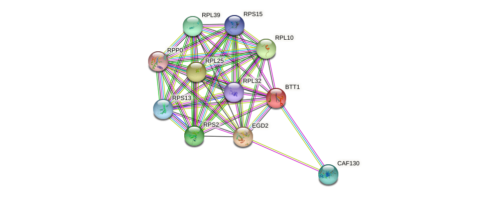 BTT1 protein (Saccharomyces cerevisiae) - STRING interaction network