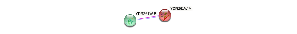 YDR261W-A protein (Saccharomyces cerevisiae) - STRING interaction network