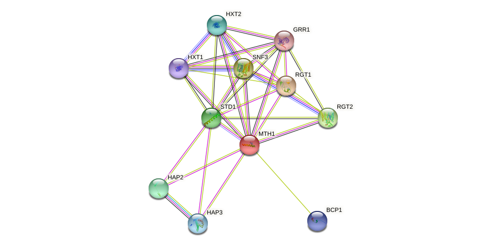 MTH1 protein (Saccharomyces cerevisiae) - STRING interaction network