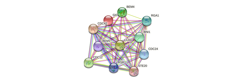 GIC2 protein (Saccharomyces cerevisiae) - STRING interaction network
