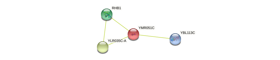 YMR051C protein (Saccharomyces cerevisiae) - STRING interaction network