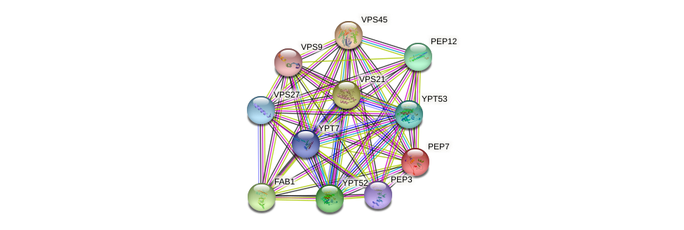PEP7 protein (Saccharomyces cerevisiae) - STRING interaction network