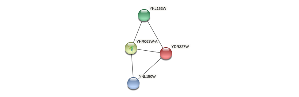 YDR327W protein (Saccharomyces cerevisiae) - STRING interaction network