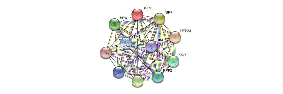 BCP1 protein (Saccharomyces cerevisiae) - STRING interaction network