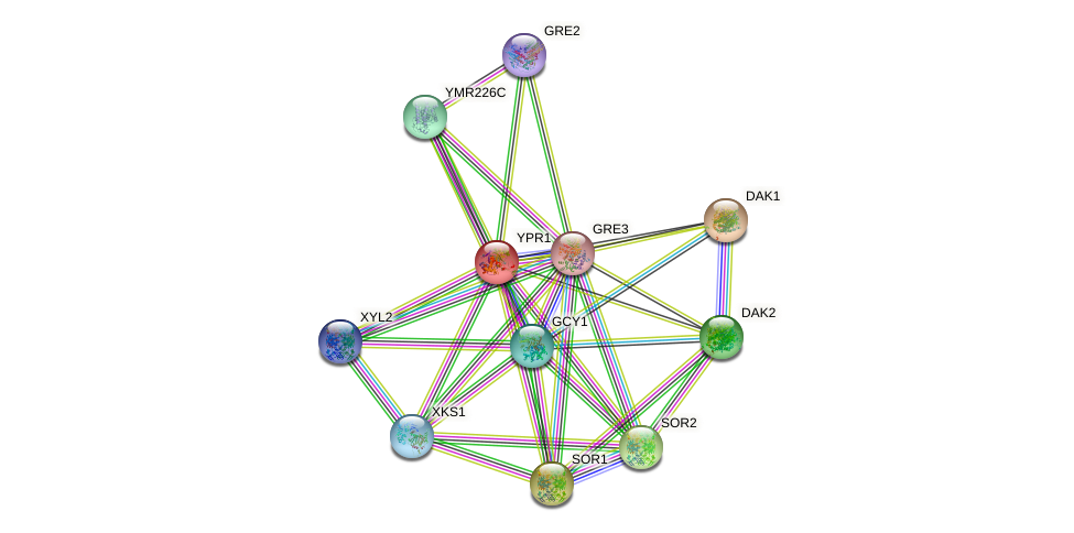 YPR1 protein (Saccharomyces cerevisiae) - STRING interaction network