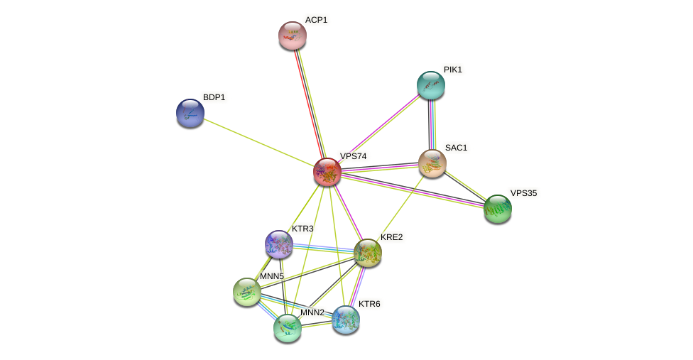 VPS74 protein (Saccharomyces cerevisiae) - STRING interaction network