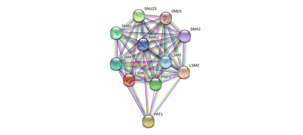 LSM6 protein (Saccharomyces cerevisiae) - STRING interaction network