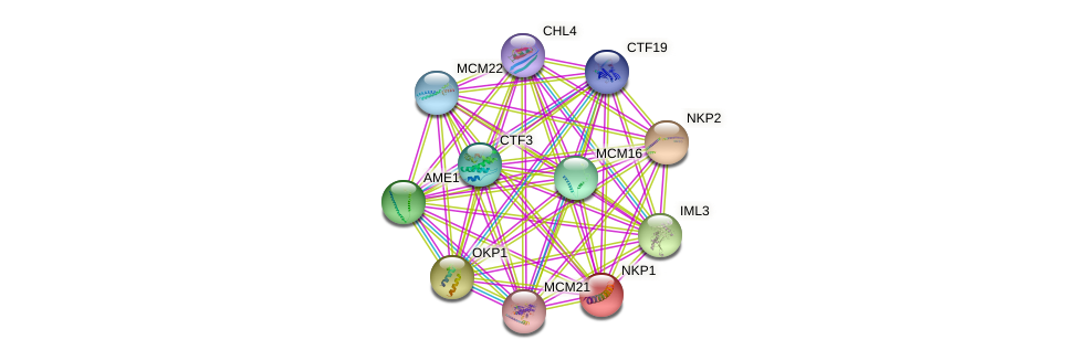 NKP1 protein (Saccharomyces cerevisiae) - STRING interaction network