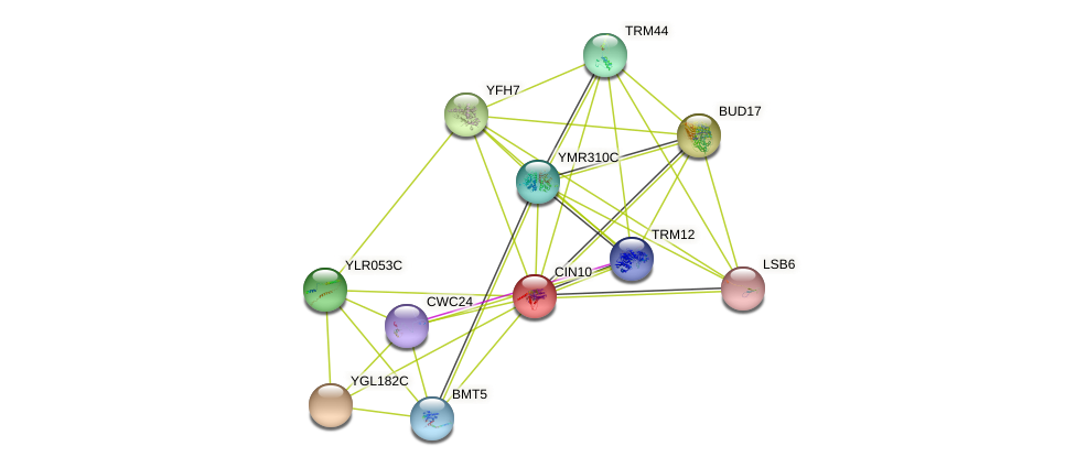 YDR387C protein (Saccharomyces cerevisiae) - STRING interaction network