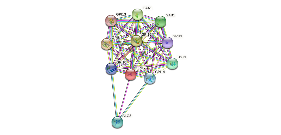 GPI17 protein (Saccharomyces cerevisiae) - STRING interaction network