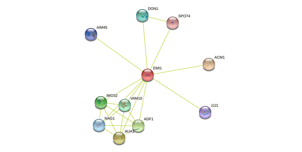 EMI1 protein (Saccharomyces cerevisiae) - STRING interaction network