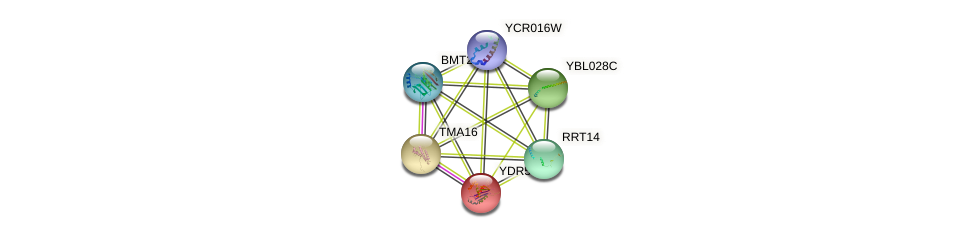 YDR514C protein (Saccharomyces cerevisiae) - STRING interaction network