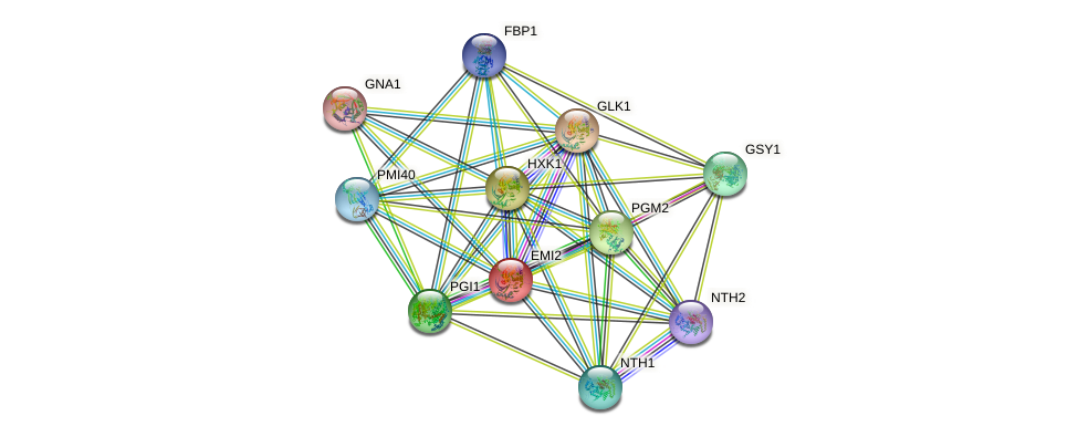 EMI2 protein (Saccharomyces cerevisiae) - STRING interaction network
