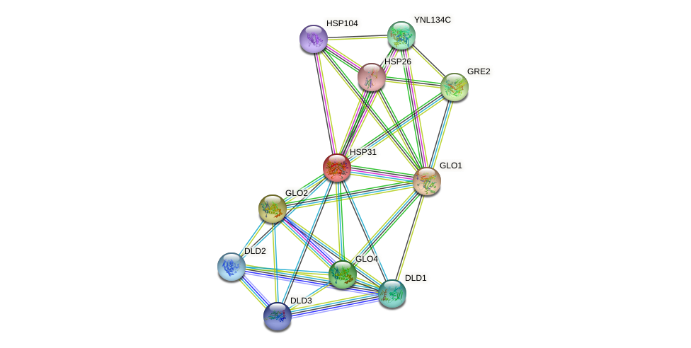 HSP31 protein (Saccharomyces cerevisiae) - STRING interaction network