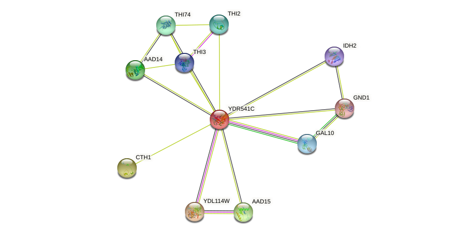 YDR541C protein (Saccharomyces cerevisiae) - STRING interaction network