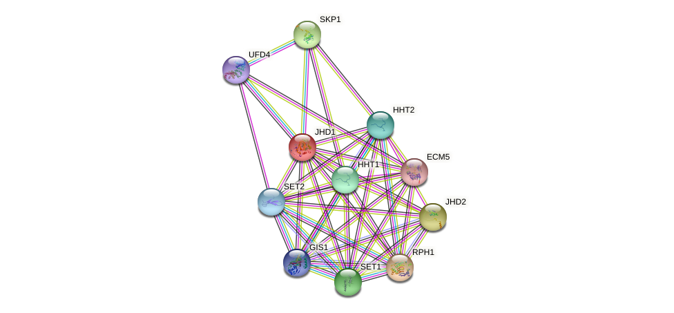 JHD1 protein (Saccharomyces cerevisiae) - STRING interaction network