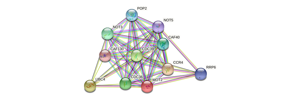 MOT2 protein (Saccharomyces cerevisiae) - STRING interaction network