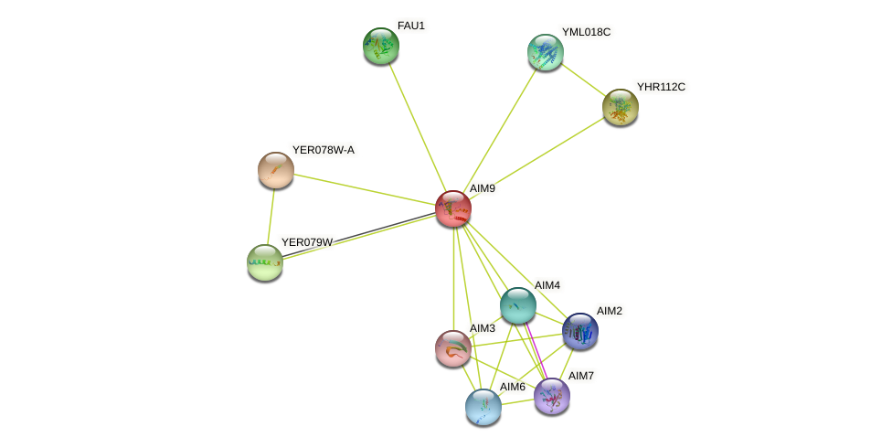 AIM9 protein (Saccharomyces cerevisiae) - STRING interaction network