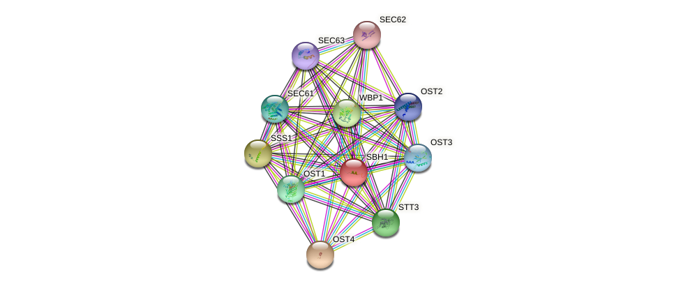 SBH1 protein (Saccharomyces cerevisiae) - STRING interaction network