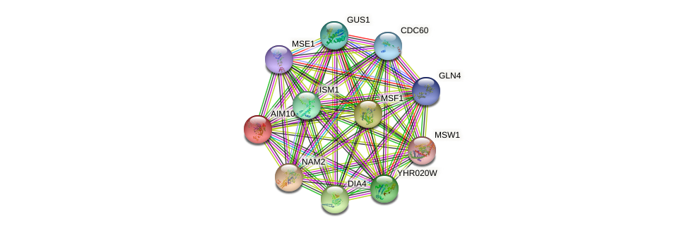 AIM10 protein (Saccharomyces cerevisiae) - STRING interaction network