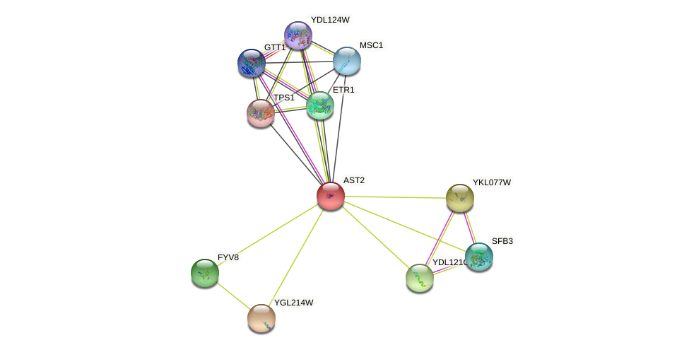 AST2 protein (Saccharomyces cerevisiae) - STRING interaction network