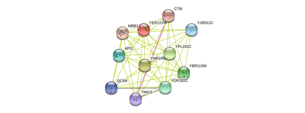 YER121W protein (Saccharomyces cerevisiae) - STRING interaction network