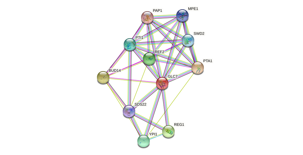 GLC7 protein (Saccharomyces cerevisiae) - STRING interaction network