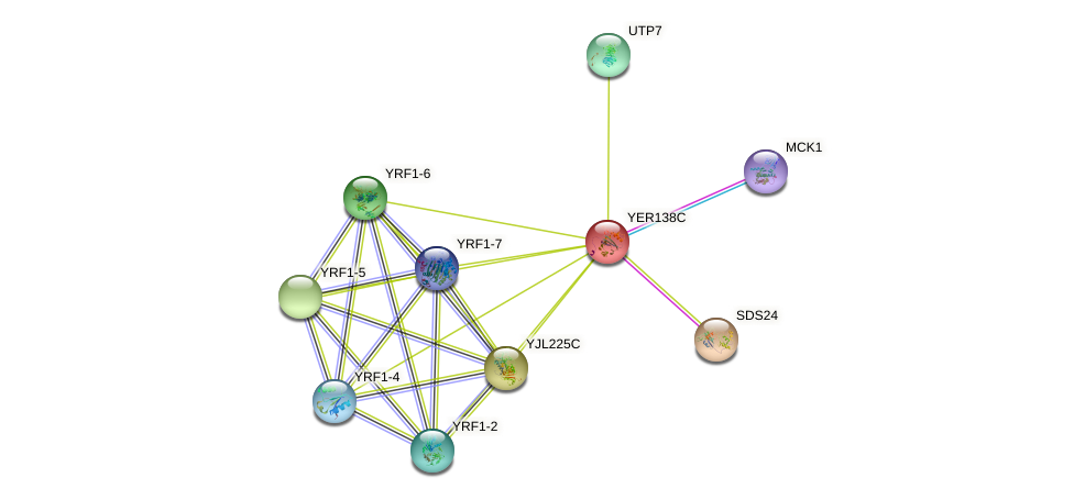 YER138C protein (Saccharomyces cerevisiae) - STRING interaction network