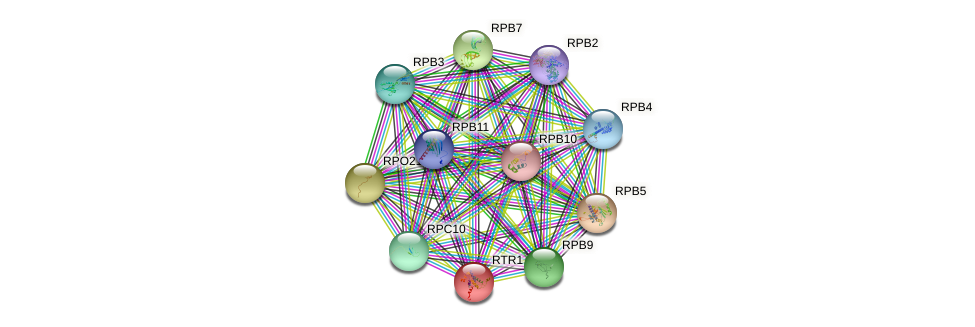 RTR1 protein (Saccharomyces cerevisiae) - STRING interaction network