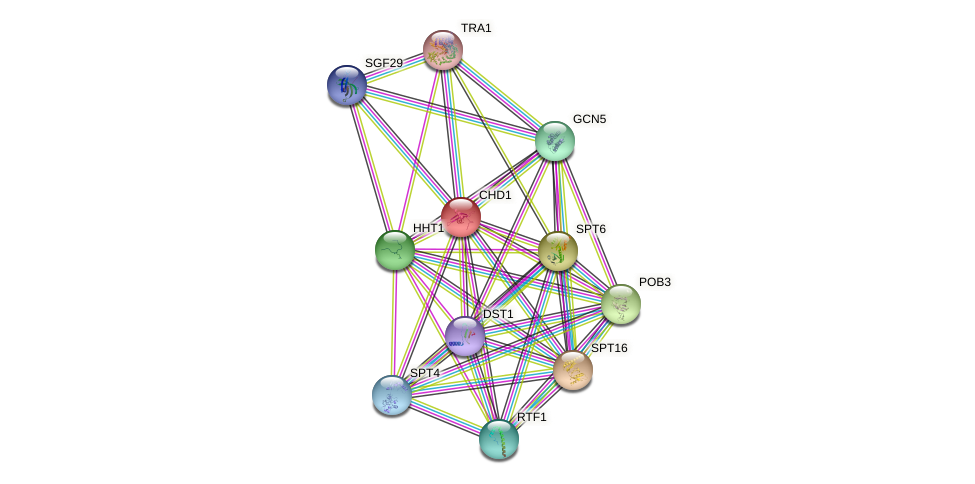 CHD1 protein (Saccharomyces cerevisiae) - STRING interaction network