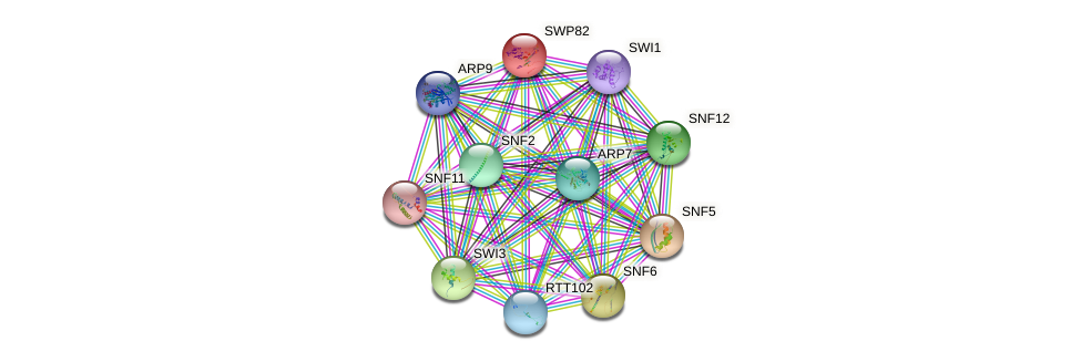 SWP82 protein (Saccharomyces cerevisiae) - STRING interaction network