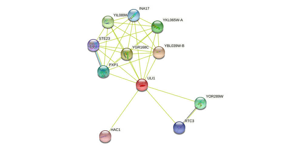 ULI1 protein (Saccharomyces cerevisiae) - STRING interaction network