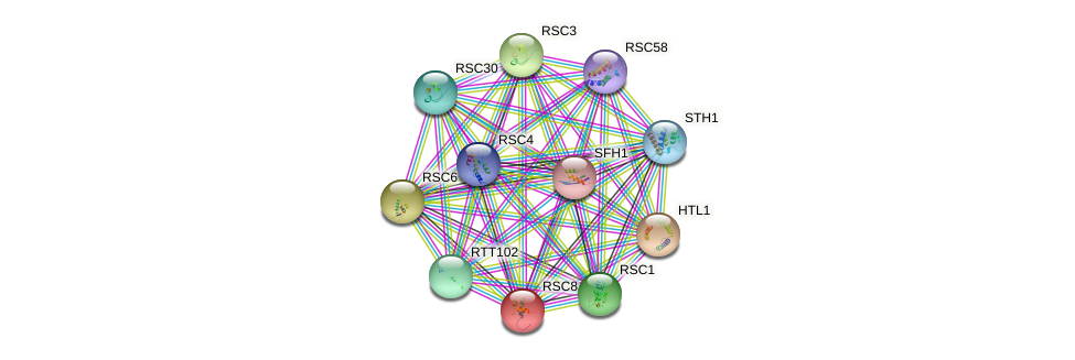 RSC8 protein (Saccharomyces cerevisiae) - STRING interaction network