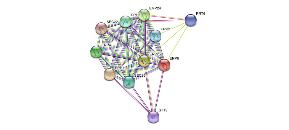 ERP6 protein (Saccharomyces cerevisiae) - STRING interaction network