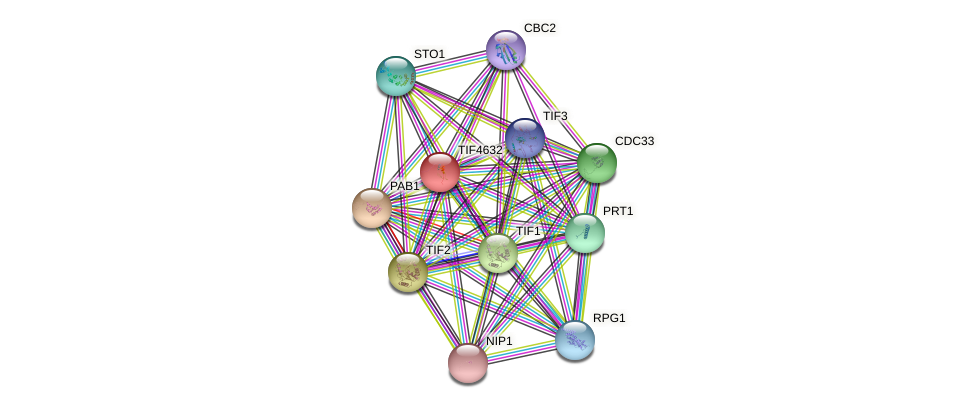 TIF4632 protein (Saccharomyces cerevisiae) - STRING interaction network