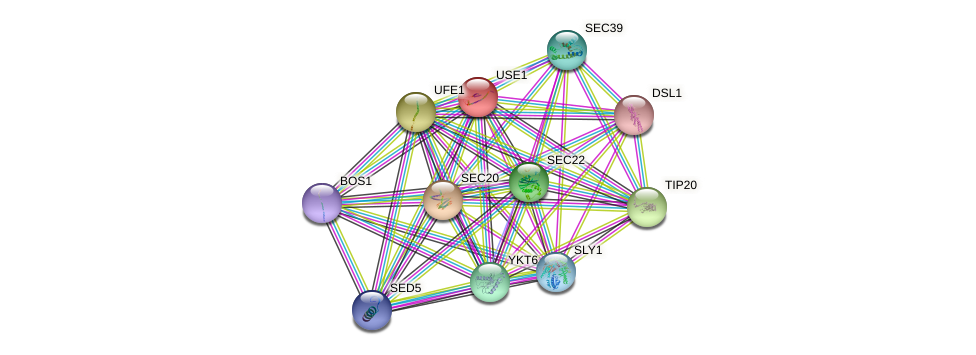 USE1 protein (Saccharomyces cerevisiae) - STRING interaction network