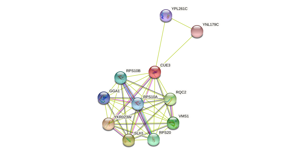 CUE3 protein (Saccharomyces cerevisiae) - STRING interaction network
