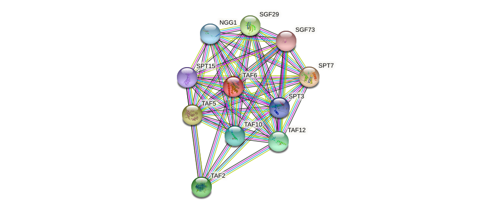 TAF6 protein (Saccharomyces cerevisiae) - STRING interaction network