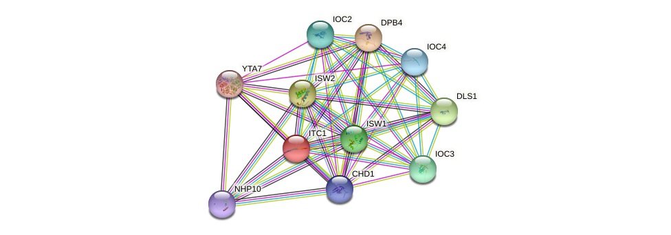 ITC1 protein (Saccharomyces cerevisiae) - STRING interaction network